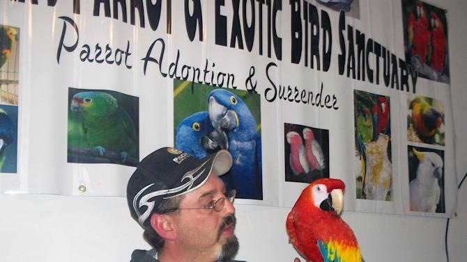 """This photo provided by Montana's Parrot & Exotic Bird Sanctuary shows Mike Taylor and his bird """"Love Love"""" taken Sunday, April 21, 2013 in Butte, Mont. The Great Falls man who lost his macaw in a divorce more than five years ago has been reunited with the bird, thanks to an observant friend. (AP Photo/Montana's Parrot & Exotic Bird Sanctuary, Lori McAlexander)"""