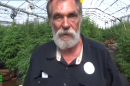 Weed greenhouses are so hot right now