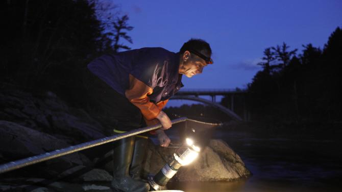 In this photo made Thursday, March 23, 2012, Bruce Steeves uses a lantern while dip netting for elvers on a river in southern Maine. Elvers are young, translucent eels that are born in the Sargasso Sea and swim to freshwater lakes and ponds where they grow to adults before returning to the sea. Adult eels are sold for food in Asia.(AP Photo/Robert F. Bukaty)