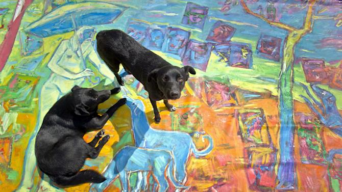 In this photo taken on April 4, 2013, shows street dogs sitting on a painting by Romanian artist Vasile Muresan, known as Murivale  in a parking lot,  in Bucharest, Romania. The white-bearded painter can often be seen sitting on his colorful canvasses which he displays in the street followed by the street dogs which are his companions and also inspire his work. The 56-year-old, whose home city is Bistrita_the Transylvanian town associated with the legendary Count Dracula_ has been painting with passion since he was a teen, producing vivid works of Monaco, the streets of Paris, the hurly burly of the Romanian capital and huge colorful more abstract canvasses. (AP Photo/Vadim Ghirda)