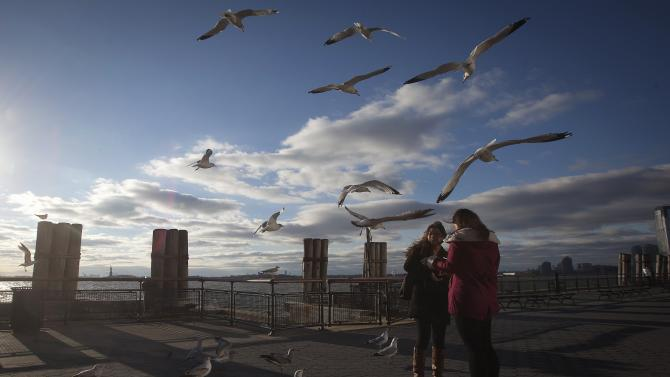 People feed the birds in Battery Park in the Manhattan borough of New York