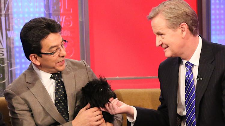 "Westminster Dog Show Best In Show Winner ""Banana Joe"" Visits Fox And Friends"