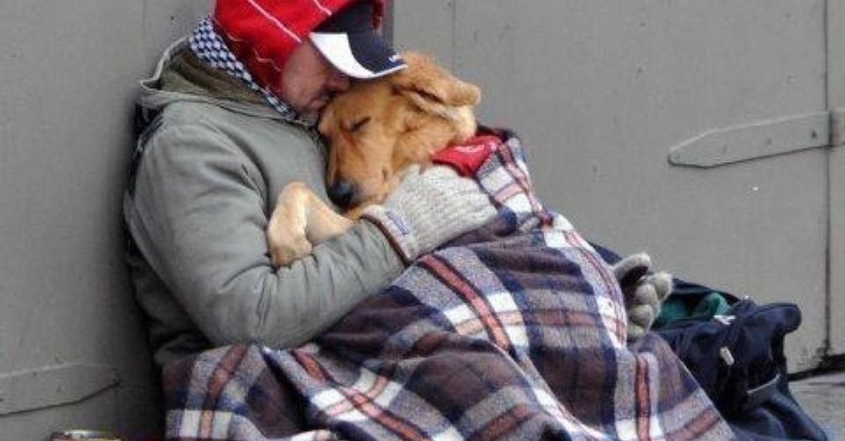 Heart-Breaking Story Of Homeless Man And His Dog