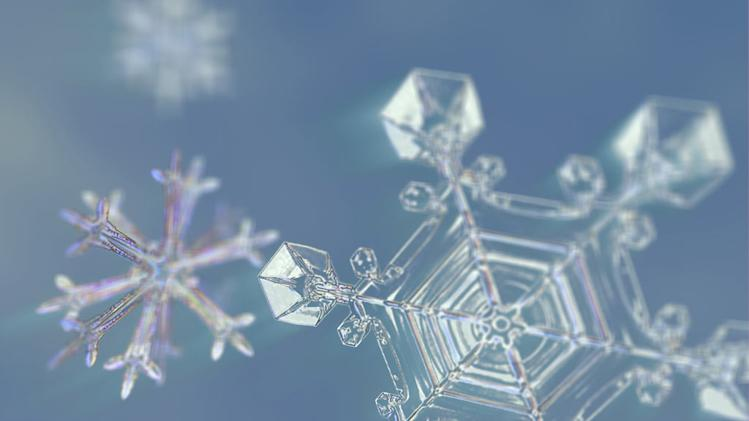 Snowflake close up detail - this is filmed with unique macro technology developed specially for the shot. Frozen Planet