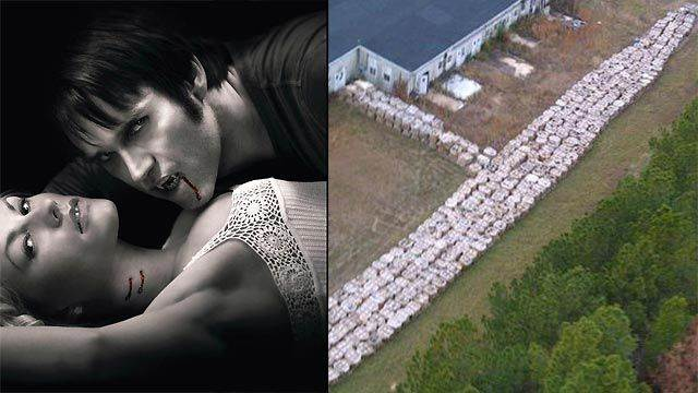 6 million pounds of explosives found in 'True Blood' town