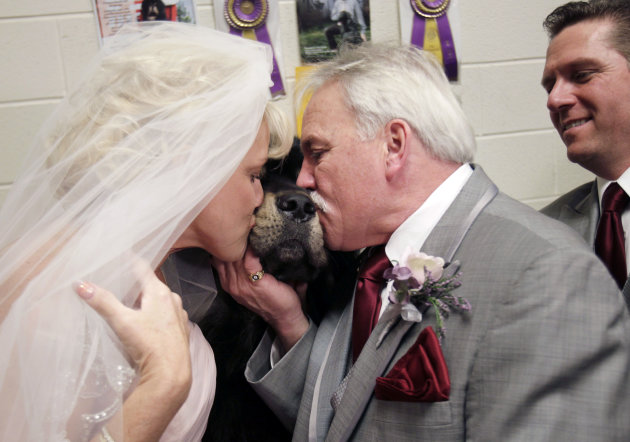Debbie Parsons, left, and Brad Slayton kiss their dog, a Tibetan mastiff named Major, after they were married at the 136th annual Westminster Kennel Club dog show in New York, Tuesday, Feb. 14, 2012.