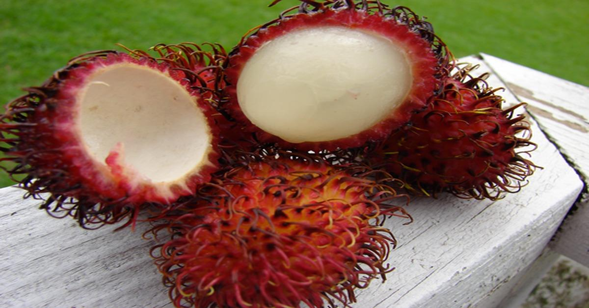 Check Out These 15 Weird Fruits