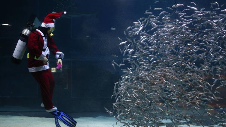 A diver dressed in a Santa Claus costume swims with sardines during a promotional event in Seoul