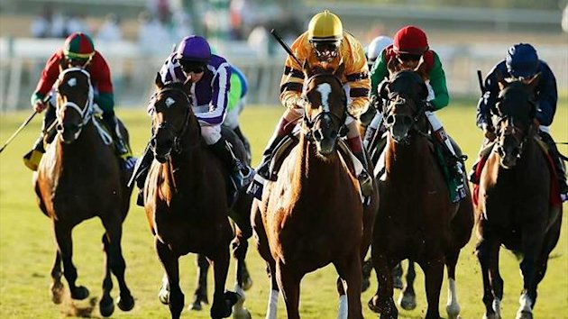 Wise Dan, centre, races to win first place during the Breeders' Cup Mile (Reuters
