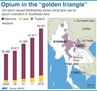 Graphic showing rising opium cultivation in Southeast Asia, according to a UN report released Wednesday