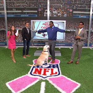 Smarter than a Canine: San Diego Chargers vs. Denver Broncos