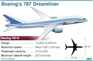 The Boeing 787 Dreamliner. A Japan Airlines Boeing 787 that was to fly to Tokyo was grounded in Boston Tuesday following a fuel spill, one day after another plane of the same type suffered a fire, government officials said