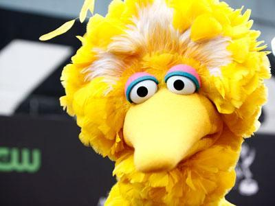 Obama campaign deploys Big Bird in new ad