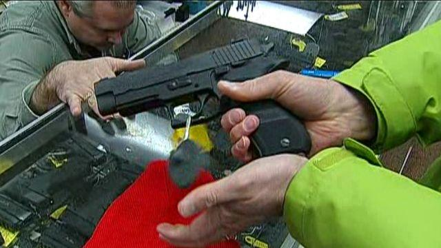 Passing of new gun laws sparks controversy in Detroit