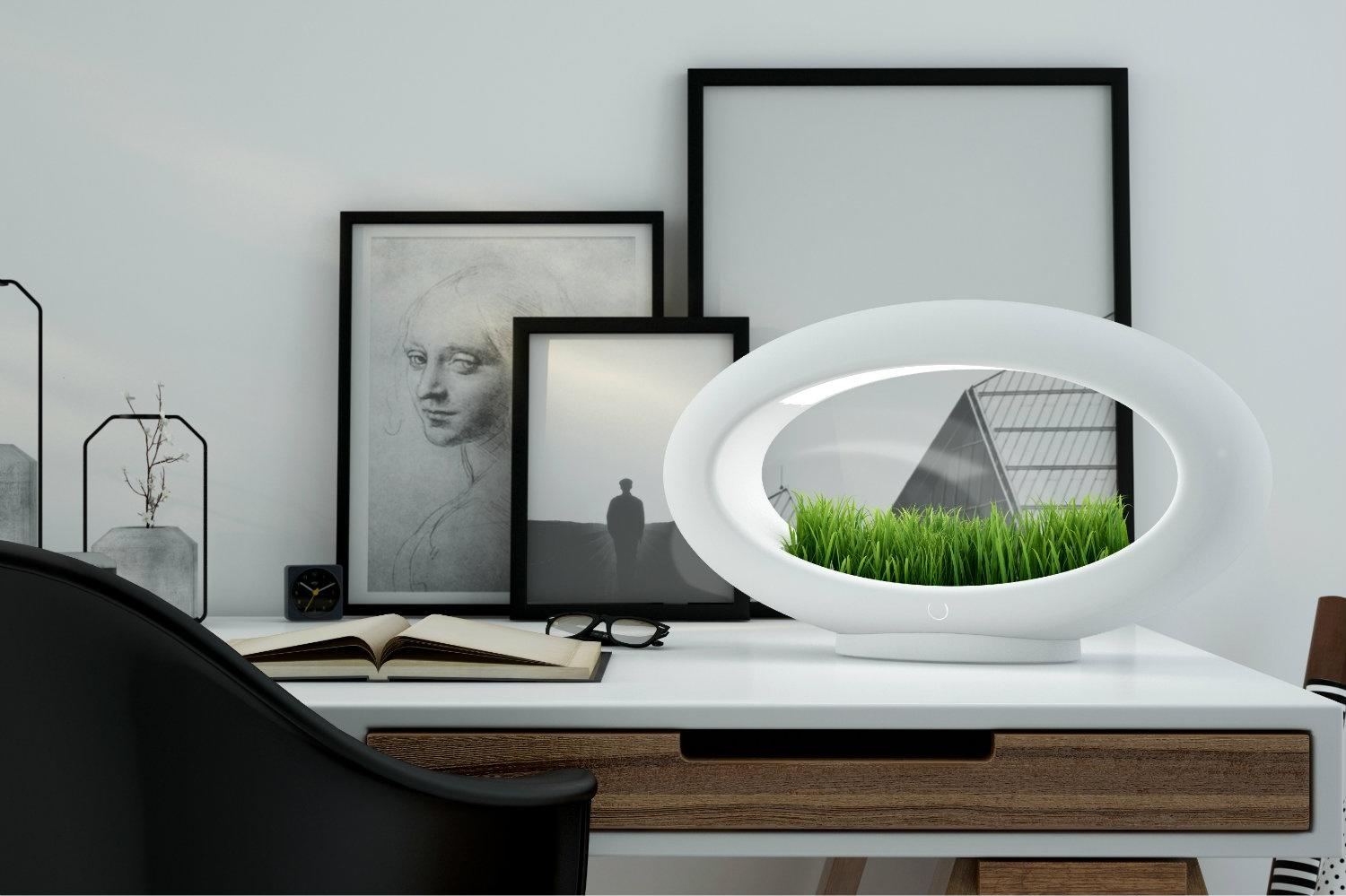 This hydroponic garden is also a lamp, and it's green in every sense of the word