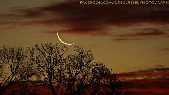 Venus and Moon Shine Bright in Stargazers' Photos