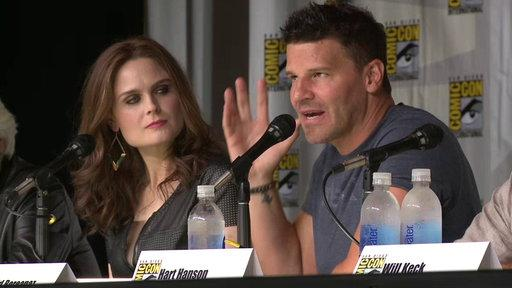 Comic-Con 2013 Panel: Highlights