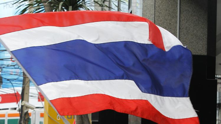 An anti-government protester waves a Thai national flag during a rally at the Shinawatra building in central Bangkok