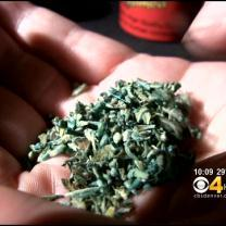 CDC: 221 Sickened By Synthetic Marijuana In Colorado
