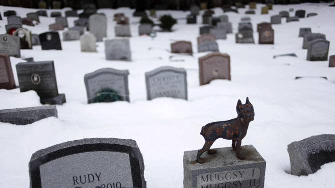 """FILE - In this file photo of Jan. 19, 2011 photo, headstones marking the graves of pets are spread throughout the Hartsdale Pet Cemetery in Hartsdale, N.Y., the first burial ground for animals named to the National Register of Historic Places. The 116-year-old Hartsdale Pet Cemetery, final home to some 75,000 animals and a few hundred humans, is being designated for its """"social history and landscape architecture."""" (AP Photo/Seth Wenig, File)"""