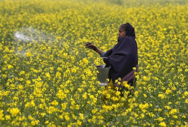 India acts to reduce cost of urea supplies to farmers