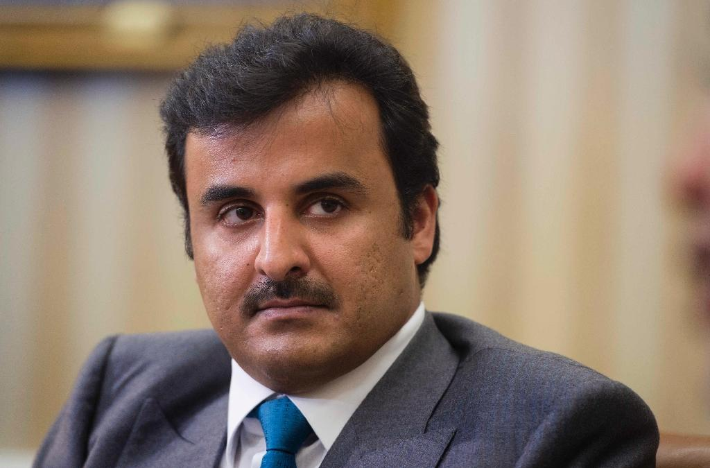 Qatar committed to 'stable' Egypt despite tensions: Emir