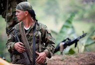 A member of the Revolutionary Armed Forces of Colombia (FARC) guerrillas with a medium machine gun mans a checkpoint near Toribio, department of Cauca, Colombia, on July 11. Colombia&#39;s government and leftist FARC rebels formally launched peace talks in Norway on Thursday in a process aimed at ending almost five decades of conflict that has claimed hundreds of thousands of lives