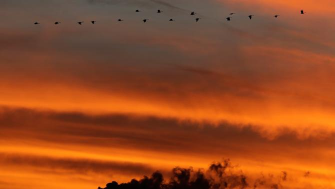 In this Sunday, Dec. 2, 2012 photo, a flock of Geese fly past the smokestacks at the Jeffrey Energy Center coal power plant as the suns sets near Emmett, Kan. Worldwide levels of the chief greenhouse gas that causes global warming have hit a milestone, reaching an amount never before encountered by humans, federal scientists said Friday, May 10, 2013. Carbon dioxide was measured at 400 parts per million at the oldest monitoring station in Hawaii which sets the global benchmark. The last time the worldwide carbon level was probably that high was about 2 million years ago, said Pieter Tans of the National Oceanic and Atmospheric Administration. (AP Photo/Charlie Riedel)