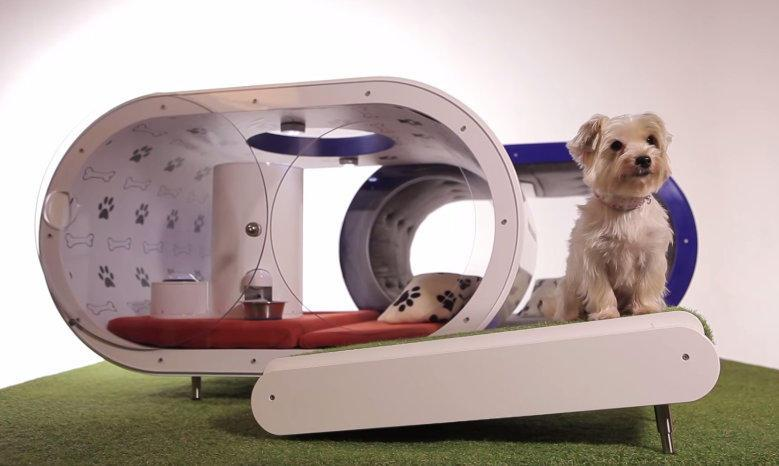 Samsung builds high-tech dream doghouse with a pup spa