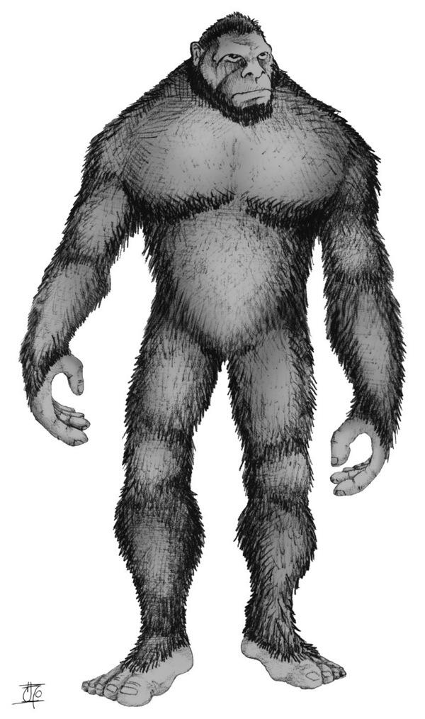 Why Do So Many Cultures Have a Version of Bigfoot?