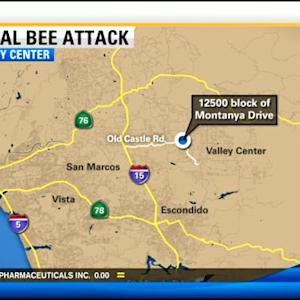Man killed by bee stings in Valley Center