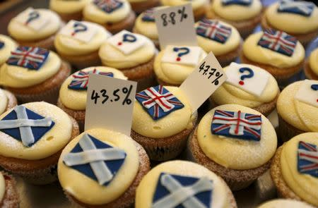 Cup cakes are displayed in the window of Cuckoo's bakery in Edinburgh