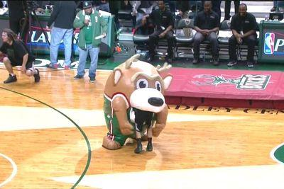 Man-eating inflatable Bucks mascot on the loose in Milwaukee