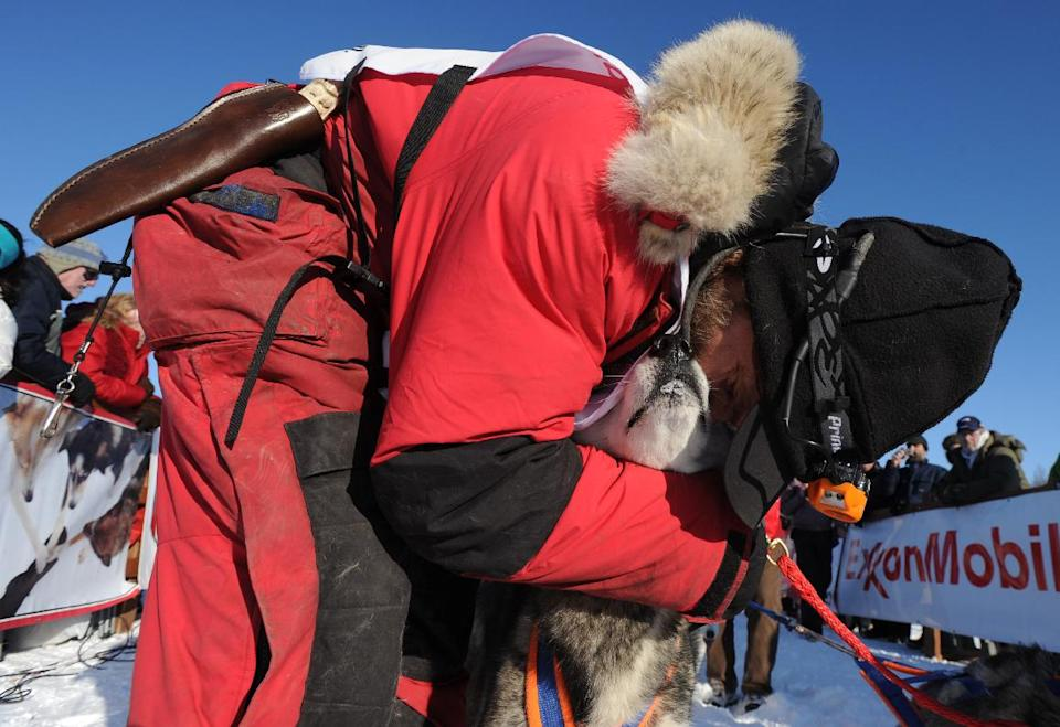 Hank Debruin, of Canada, embraces one of his lead dogs at the official start of the Iditarod Trail Sled Dog Race on Sunday, March, 4, 2012, in Willow, Alaska. (AP Photo/Anchorage Daily News, Bill Roth)