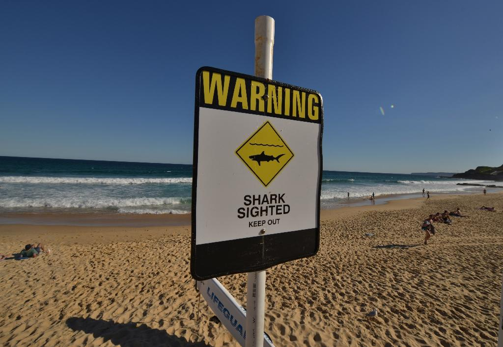 Man attacked by shark in Australia