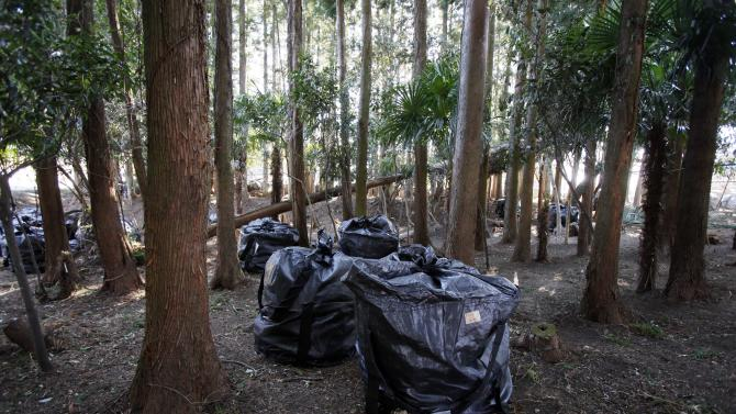 In this Tuesday, March 5, 2013 photo, bags of radiation-contaminated leaves and soil sit in a stand of trees in the abandoned town of Naraha, just outside the exclusion zone surrounding the Fukushima Dai-ichi nuclear plant in Japan. Two years after the triple calamities of earthquake, tsunami and nuclear disaster ravaged Japan's northeastern Pacific coast, radioactive and chemical contamination remains a threat as clean-up projects face troubles with organized crime and mishandling. (AP Photo/Greg Baker)