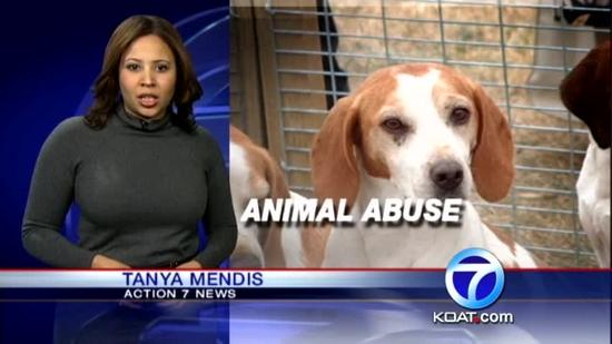 Study: NM animal abuse laws among weakest