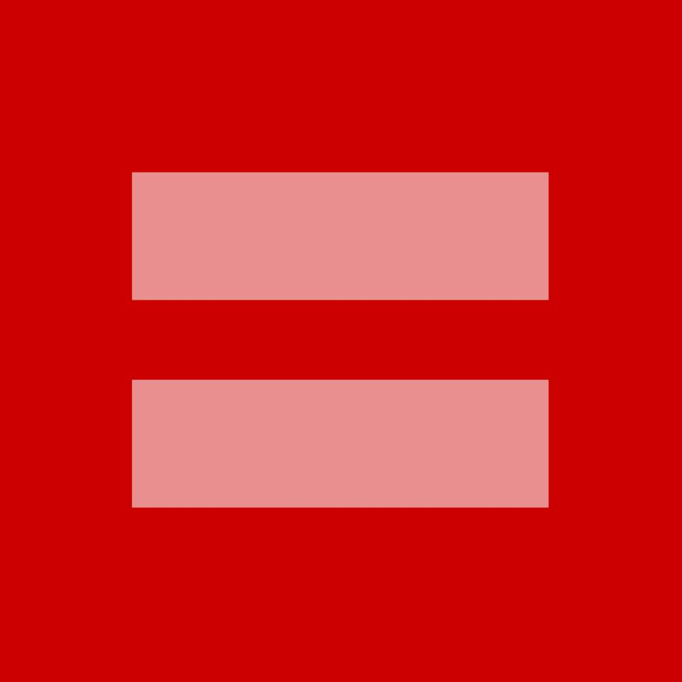 Gay marriage equality box spreads on social media