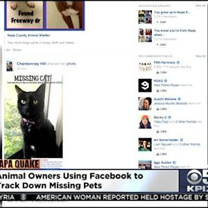 Facebook Page Helps Owners Find Missing Pets From Napa Quake