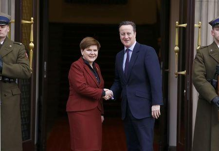 Poland wants Britain in EU, backs some of Cameron's proposals