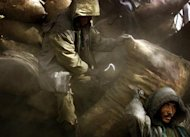 An Afghan man carries a bag with coal to be distributed to poor people in Kabul November 28, 2001. REUTERS/Damir Sagolj