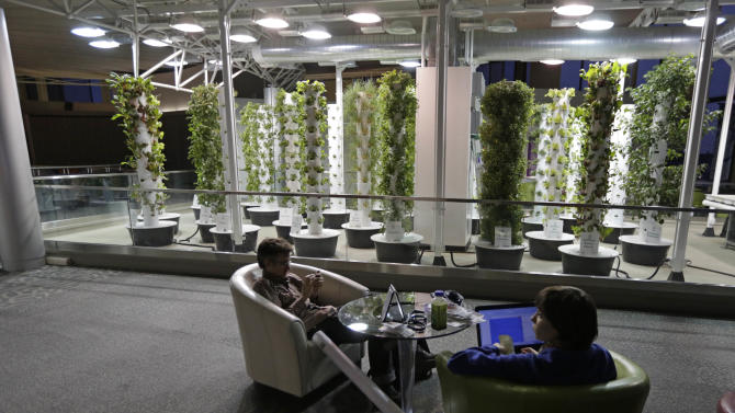 In this photo taken Tuesday, Dec. 18, 2012, at O'Hare International Airport in Chicago, travelers David Janesko and Tess Menotti relax between flights next to O'Hare's Urban Garden where fresh herbs are grown and used in airport restaurants. Getting stranded at an airport once meant camping on the floor and enduring hours of boredom in a kind of travel purgatory with nothing to eat but fast food. Tough economic times are helping drive airports to make amends and transform terminals with a bit of bliss: spas, yoga studios, luxury shopping and restaurant menus crafted by celebrity chefs. (AP Photo/M. Spencer Green)