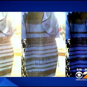 White And Gold, Or Blue And Black? Social Media Explodes Over Dress