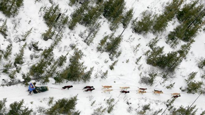 FILE - A musher drives his team along the Iditarod Trial Sled Dog Race through the trees on the Farewell burn area near Nikolai, Alaska Tuesday, March 8, 2005. (AP Photo/Al Grillo, File)