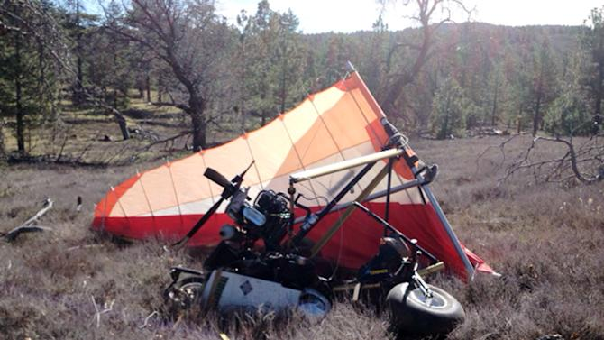 This image provided Saturday March 22, 2014, by U.S. Immigration and Customs Enforcement (ICE), shows a crash site Friday where Federal authorities said an ultralight aircraft carrying about 250 pounds of marijuana crashed in the mountains east of San Diego. (AP Photo/ICE)
