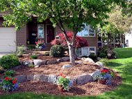 Organic vs. inorganic mulch: What's right for your landscape?