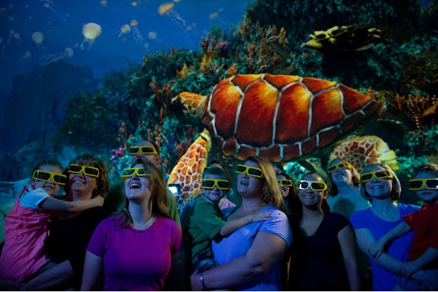 This undated image provided by SeaWorld Orlando shows a new attraction at the park featuring sea turtles. The exhibit, which includes live sea turtles as well as a 3-D movie about the endangered creat