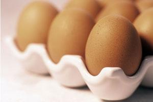 New study suggests eggs are as bad for you as smoking