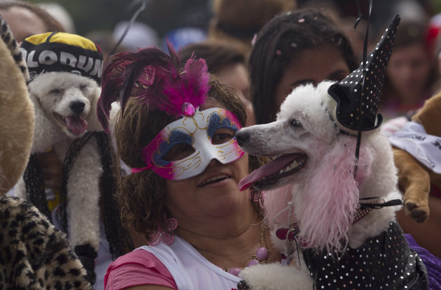 A woman carries her disguised dog during the &quot;Blocao&quot; dog carnival parade in Rio de Janeiro, Brazil, Sunday, Feb. 3, 2013. According to Rio's tourism office, Rio's street Carnival this year will consi