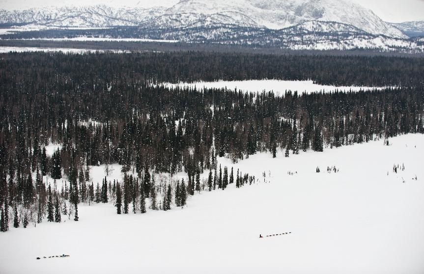 Two teams competing in the Iditarod Trail Sled Dog Race make their way between the Skwentna and Finger Lake checkpoints, heading toward the Alaska Mountain Range, on Monday, March 5, 2012. (AP Photo/Anchorage Daily News, Marc Lester)
